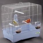Выбираем клетки для птиц на Zoo-friend.ru