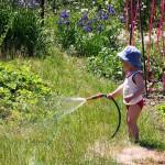 Садовая техника для облегчения труда.