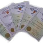 Современные патентные услуги – грамотная регистрация товарных знаков и иная работа.
