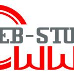 Услуги современной веб студии.