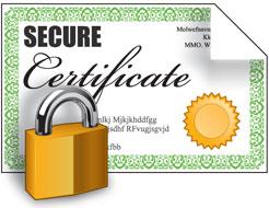сертификат Comodo Intranet SSL