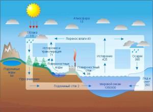 Тепловой баланс почвы